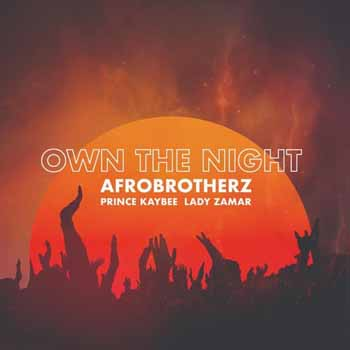 afro brothers own the night ft prince kaybee