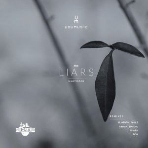 Udumusic, Hlayisani – The Liars (Demented Soul Imp5 Afro Mix) mp3 download